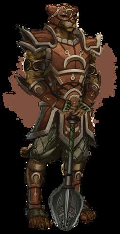 File:Khajiit medium armor.png