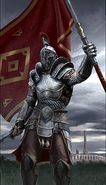 Legion Praefect card art