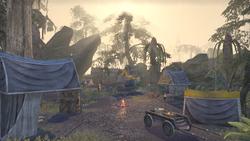 Лагерь Шелковистая западня