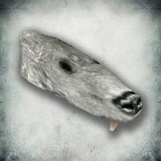 Шкура снежного медведя (Bloodmoon)