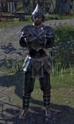 Male Alik'r Protector