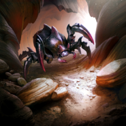 Assassin Beetle card art