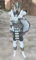 Ice (Stahlrim) Armor MW.png