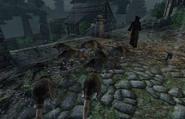 Sheogorath Quest Rats