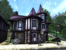 Здание в Чейдинхоле (Oblivion) 3