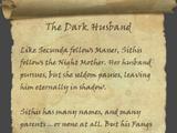 The Dark Husband