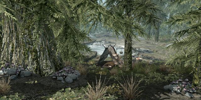 File:Alchemist's Camp2.png