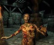 Elderscroll4zombie