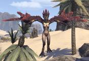 Harpy Alik'r Desert