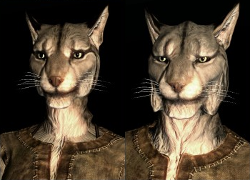File:SepLnUp Khajiit a1&c1.png
