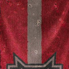 Flaga Samotni