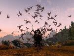 Вампир летучие мыши