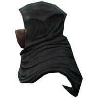 File:Shrouded Cowl (Maskless).png