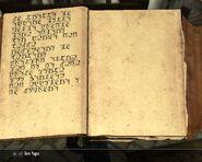 Scrittura falmer 7