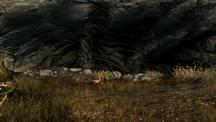Осенняя поляна 2