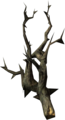 Canis root.png