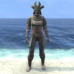 Postać nosząca średnią zbroję Tsaesci z gry The Elder Scrolls Online