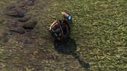 Dwarven Theodolite Pet