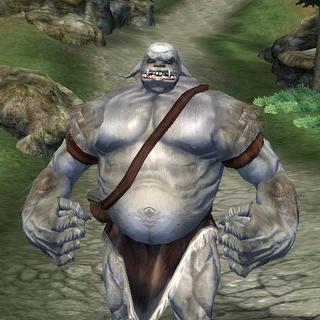 Ogr z gry The Elder Scrolls IV: Oblivion