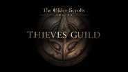 Thieves Guild cover