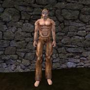 Простые штаны (Morrowind) 8 (муж)