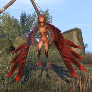 Harpy (Online)