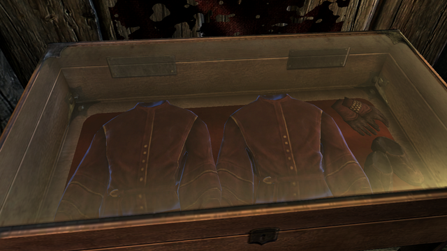 File:MythicDawnClothesDisplayCase.png