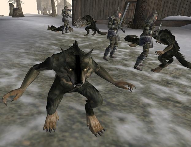 File:Siege of Skaal Village.png