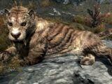 Gato sable (Skyrim)