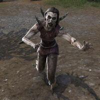 Зомби (Online)
