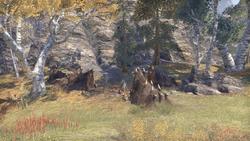 Лагерь Линеля Резчика черепов