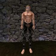 Простые штаны (Morrowind) 12 (муж)