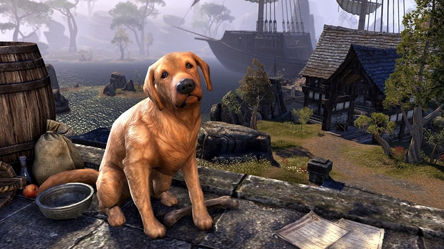 File:Bravil Retriever.png