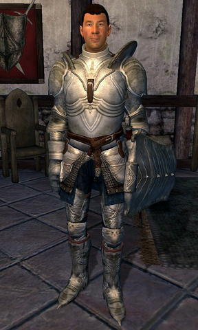 File:Fighters Guild Porter Cheydinhal.png