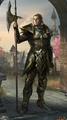 High Elf avatar 2 (Legends).png