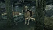 Horse Solitude Palomino
