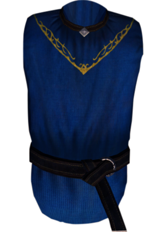 File:TESIV Clothing Arch-Mage's Robes.png