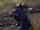 Loup (Online)
