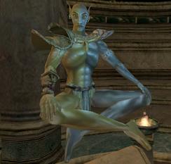 Вивек в храме