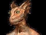 Argonian (Oblivion)