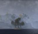 City Isle (Online)