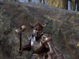 Malacath Champion