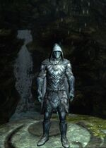 Skyrim Nightingales Armour