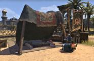 Snagara's Shop