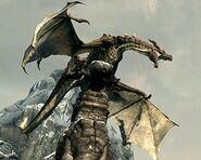 Drago antico (Skyrim)