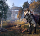 Shadowghost Wolf