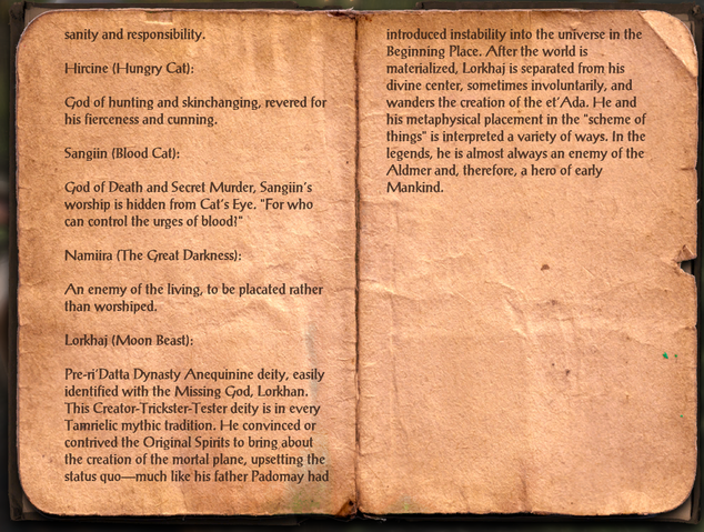 File:Varieties of Faith - The Khajiit 3.png