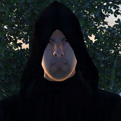 Arterion face