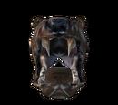 Helmet of Bearkind
