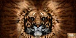 File:Khajiit texture 2.png